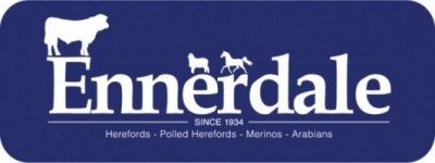 Ennerdale Herefords 2019 On Property Bull Sale – March 4th