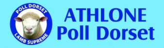 Athlone Poll Dorsets and Southdowns 2017 On Property Ram Sale – Oct 20th