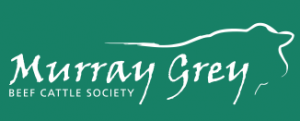 2019 Achmea Murray Grey National Show and Sale, Wodonga – Apr 29th