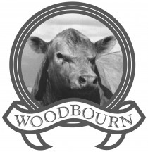 Woodbourn Murray Greys 2019 Bull and Female Sale – May 6th