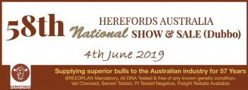 58th Annual Herefords Australia 2019 Poll Hereford National Show & Sale – June 4th – DUBBO