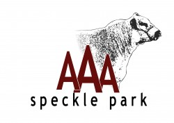 AAA Speckle Park will offer 9 Lots at the 2019 Scone Speckle Park Sale – Apr 27th