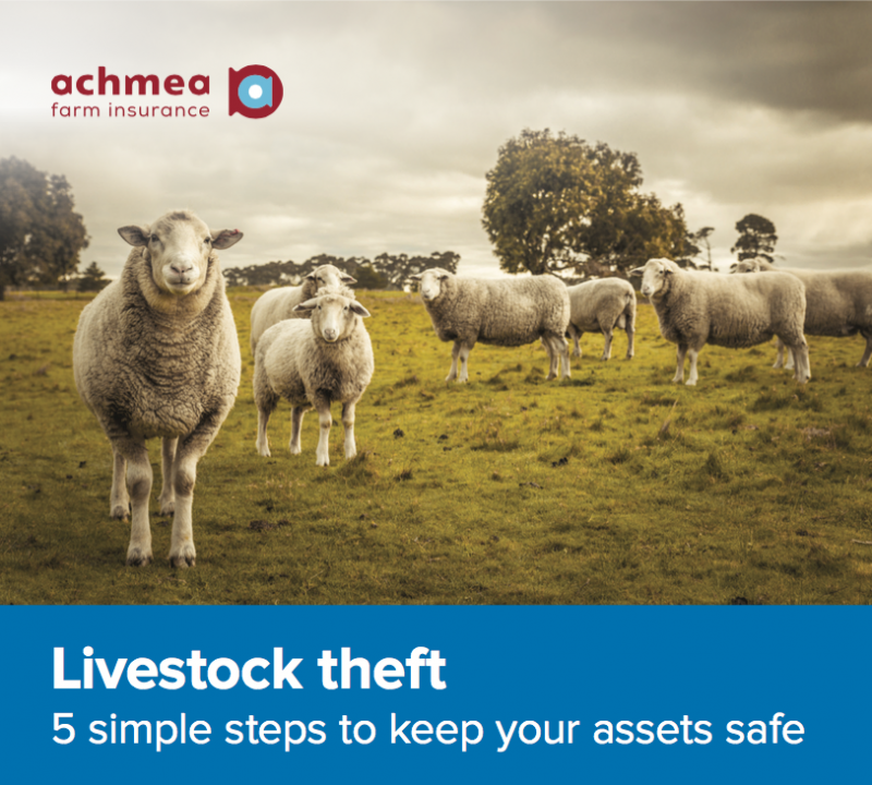 Livestock theft fact sheet – 5 simple steps to keep your assets safe